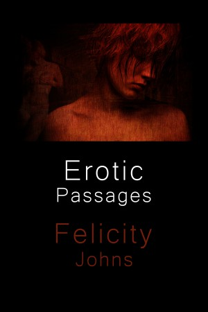 """Erotic Passages"" by Felicity Johns - Cover Art and Design by Ivan Vladik"